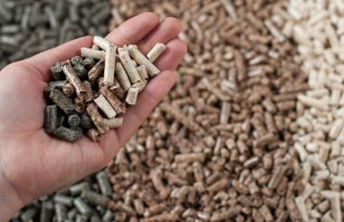 La biomasse dans l'Union européenne